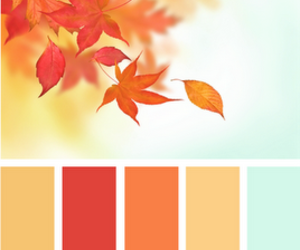 color, autumn, and fall image