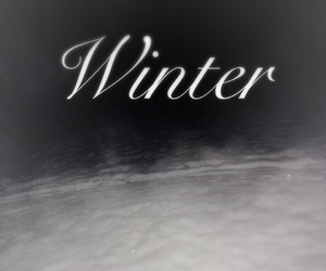 cold, dark, and snow image