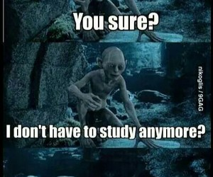smeagol, funny, and lord of the rings image