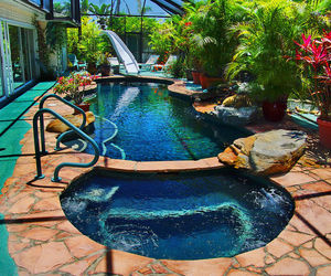 flowers, plants, and pool image