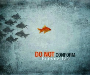 conform and don't image
