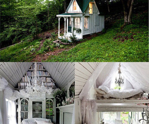 house, white, and forest image