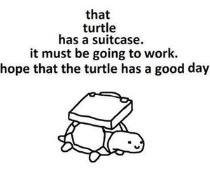 turtle, work, and suitcase image