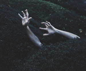 bushes, fingers, and hands image