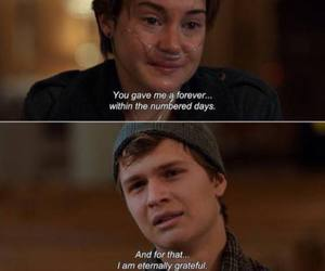 the fault in our stars, tfios, and forever image