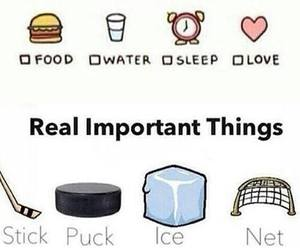 hockey, ice, and net image