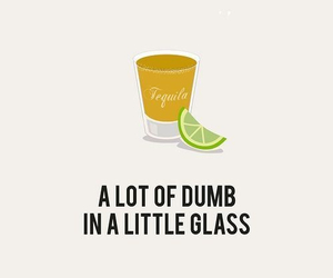 funny, tequila, and alcohol image