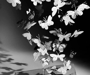 book, butterfly, and art image