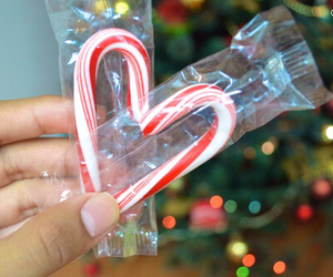 candy cane, christmas, and tumblr image