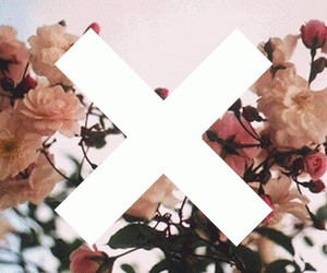 flowers, the xx, and music image