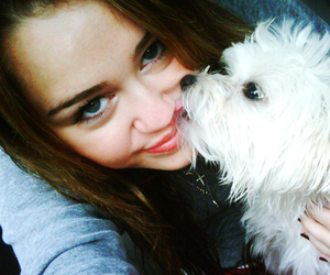 dog, miley cyrus, and sophie image