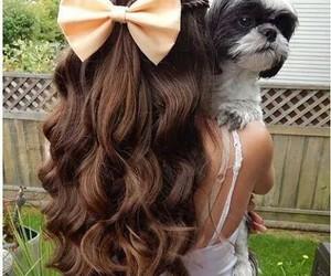 hair, dog, and bow image