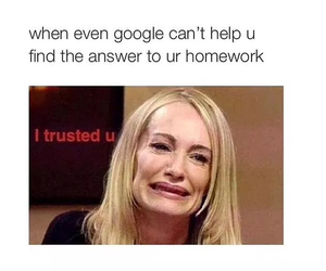 google, homework, and funny image