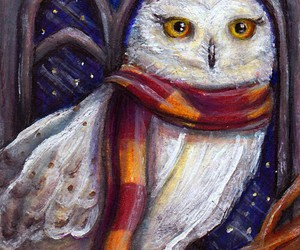 book, harry potter, and hedwig image