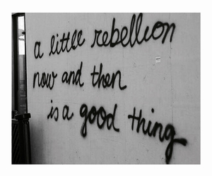 rebellion, quote, and rebel image