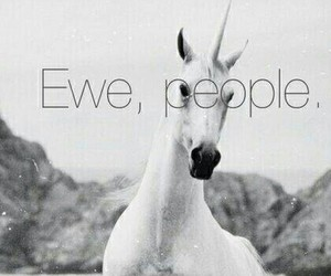 unicorn, people, and ewe image