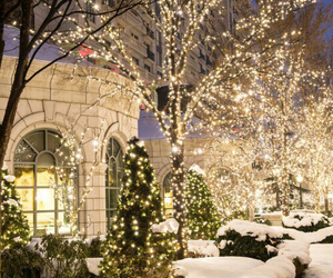 bright, snow, and christmas image