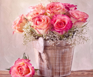 flowers and images image