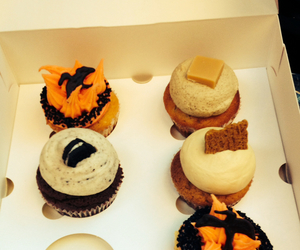 cupcake, food, and hungergames image