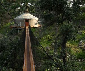 nature, trees, and treehouse image