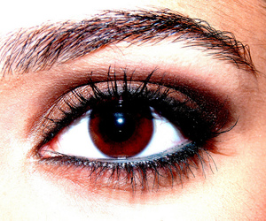 brown, brown eye, and colours image