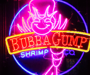 neon, neon signs, and pink image