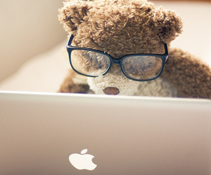 bear, apple, and glasses image