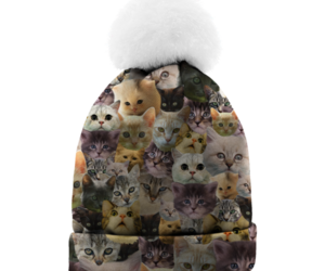 beanie, cap, and cats image