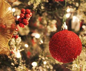 christmas tree, christmas, and light image