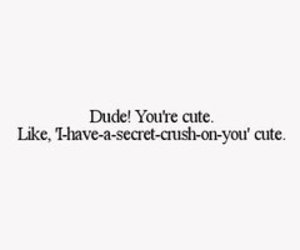 crush, dude, and secret image