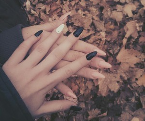 autum, colors, and nails image