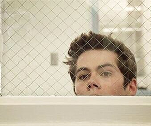 dylan o'brien and cute image