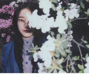 Image by 梅雨