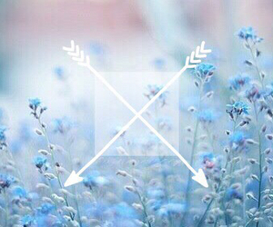 flowers, arrow, and blue image