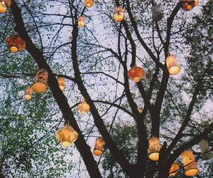 light and tree image