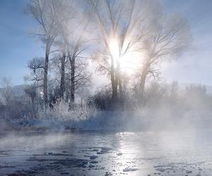 enchanting, holidays, and shining image