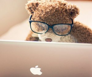 bear, busy, and nerds image