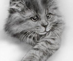 adorable, animal, and art image