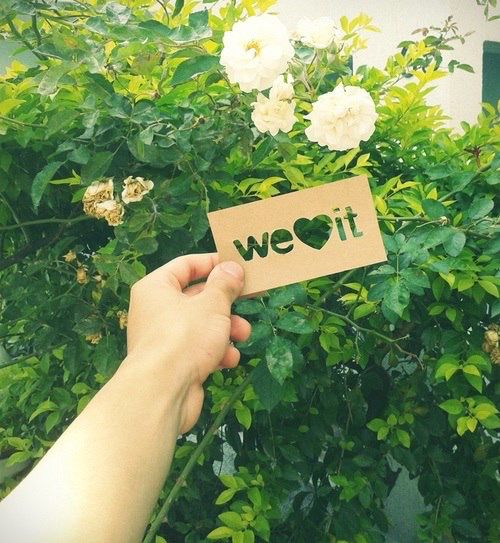 flowers, green, and we heart it image