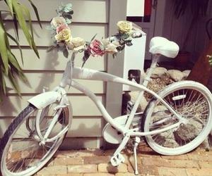 flowers, bike, and white image