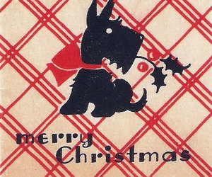 christmas, plaid, and scottie image