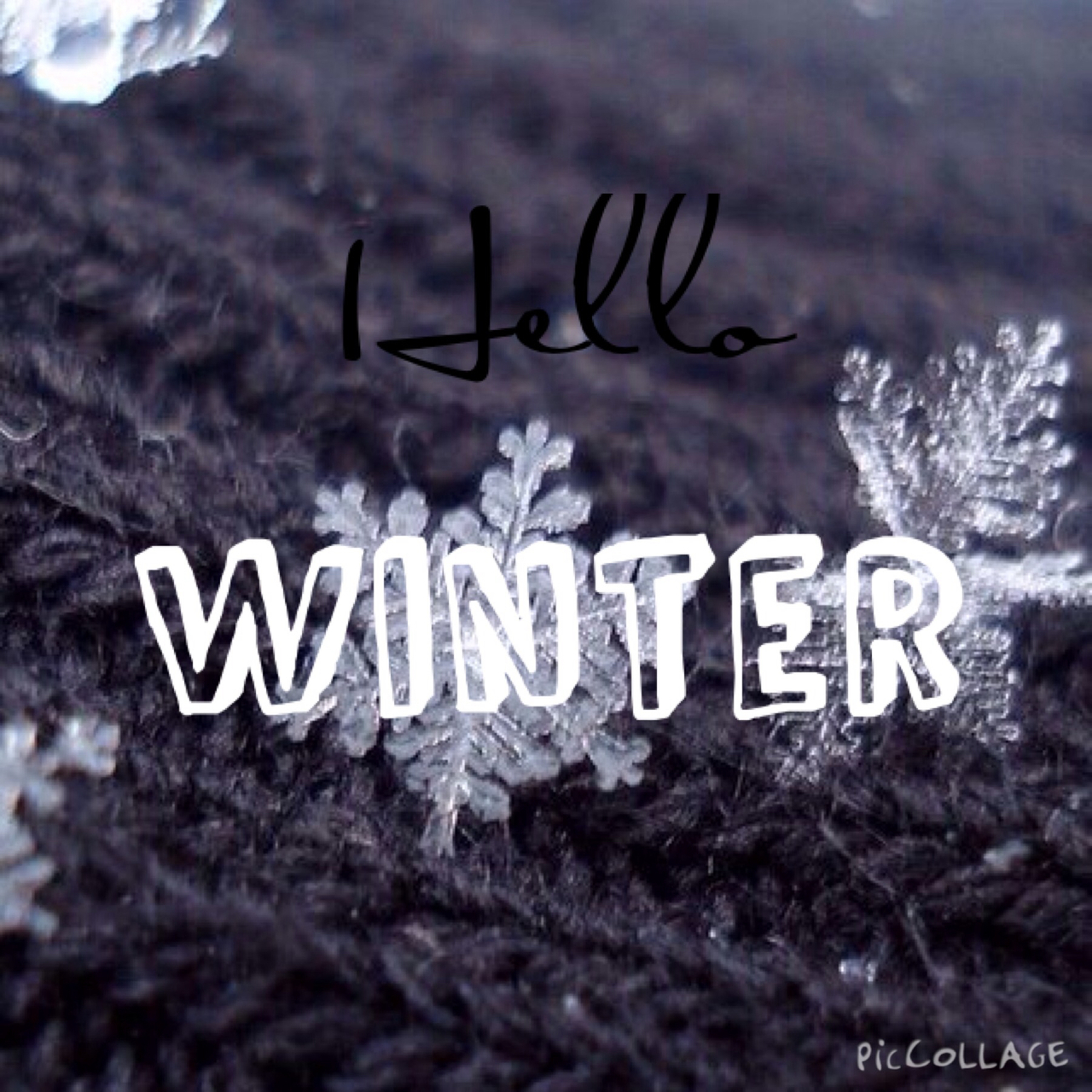 beautiful, winter, and love image