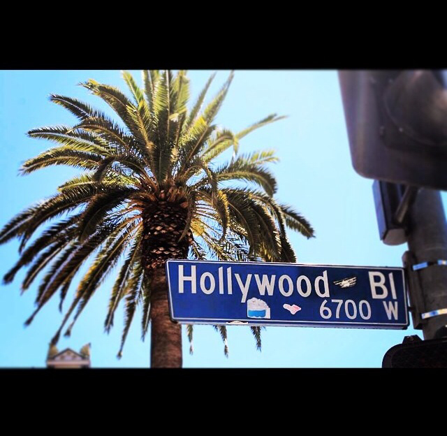 amazing, hollywood, and los angeles image