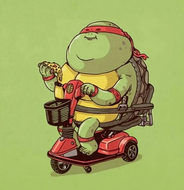 fat, turtle, and funny image