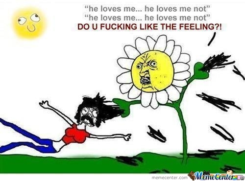 funny, lol, and flowers image