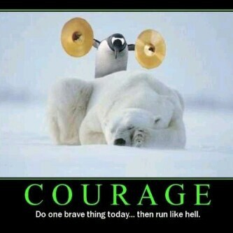 funny, courage, and penguin image