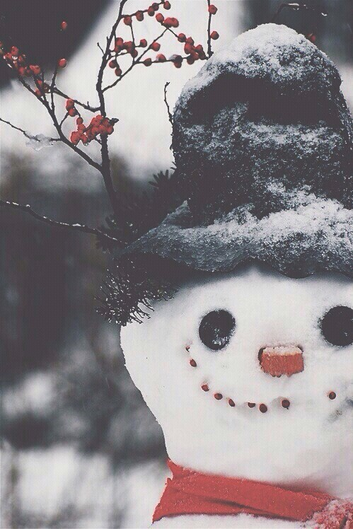 Snowman Discovered By Desire On We Heart It