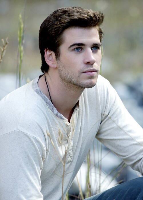liam hemsworth, gale, and hunger games image