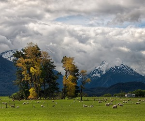 clouds, mountains, and sheep image