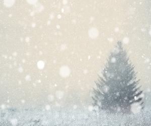 adventure, christmas tree, and dreams image
